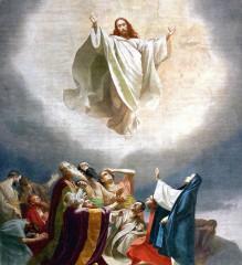 La citation du jour – 171 / Thérèse de Jésus