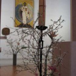 La citation du jour – 115 / Thérèse de Jésus