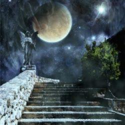 Chemins de traverse – 357 / Dante Alighieri