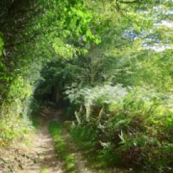Chemins de traverse – 463 / Jean Lavoué