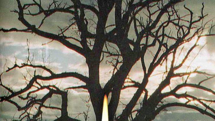 La prière du Rosaire – 8 / Les Mystères lumineux
