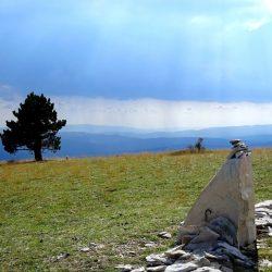 Chemins de traverse – 769 / Jean Giono