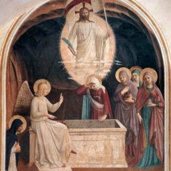 Morceaux choisis – 695 / Pape François